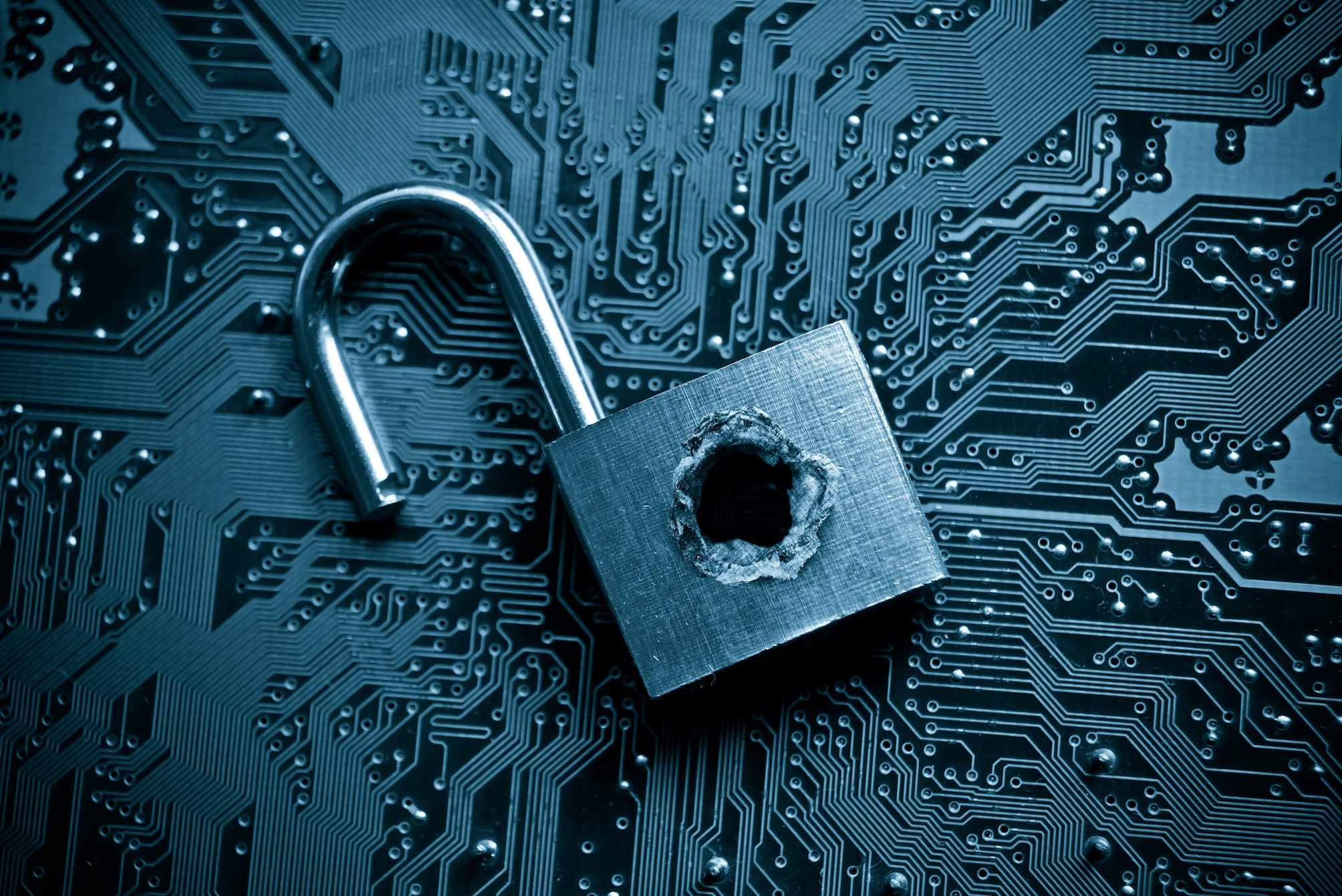 LifeLock Security Risk