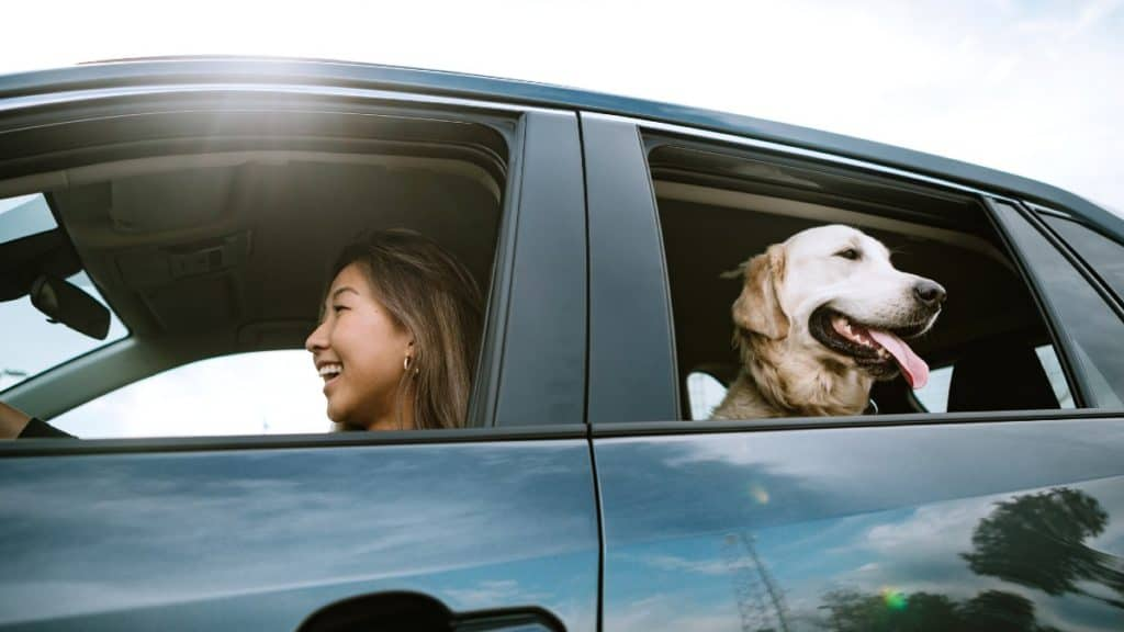 Getting finance on a car? Time to think about your credit score